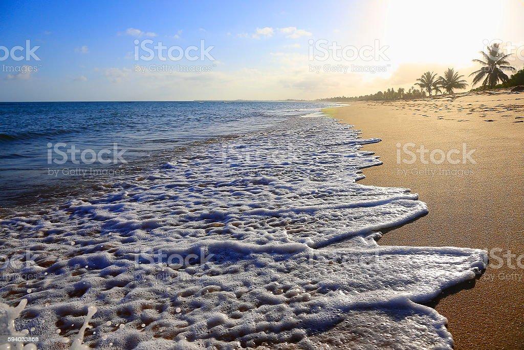 Paradise: Praia do Forte idyllic Tropical beach, Bahia, Northeastern Brazil stock photo