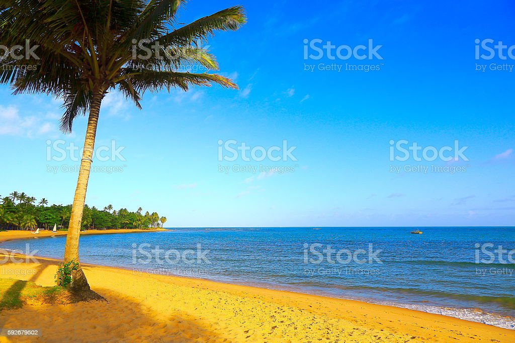 Paradise: Trancoso idyllic Tropical beach, Bahia state, Northeastern Brazil stock photo