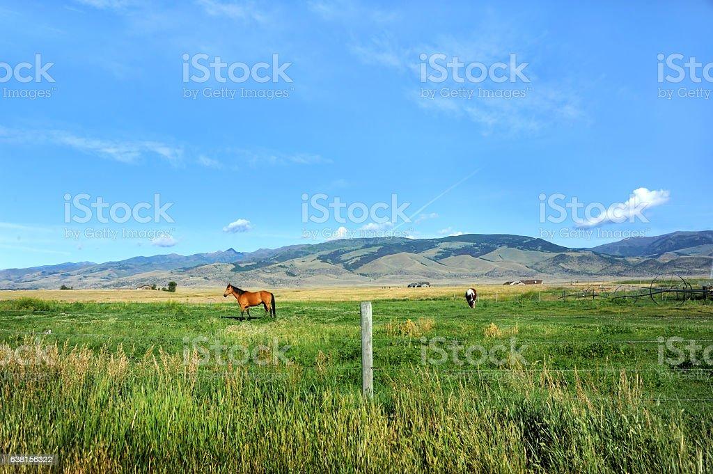 Paradise Valley stock photo
