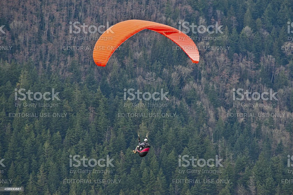 Paraglider Flying Above the Trees royalty-free stock photo