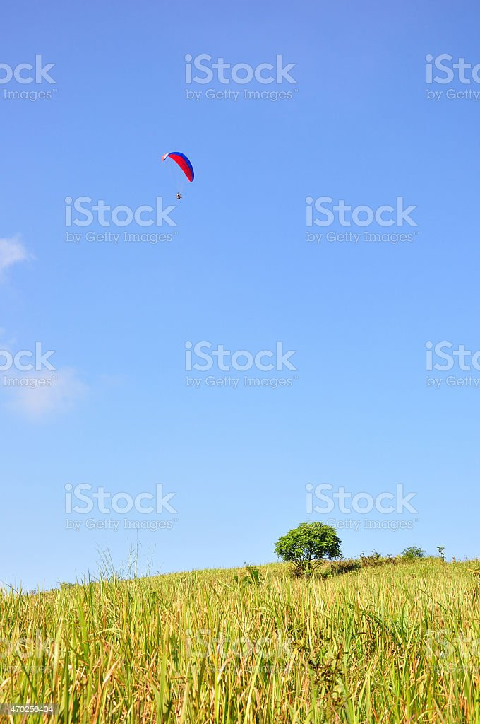 Paragliding over grass stock photo