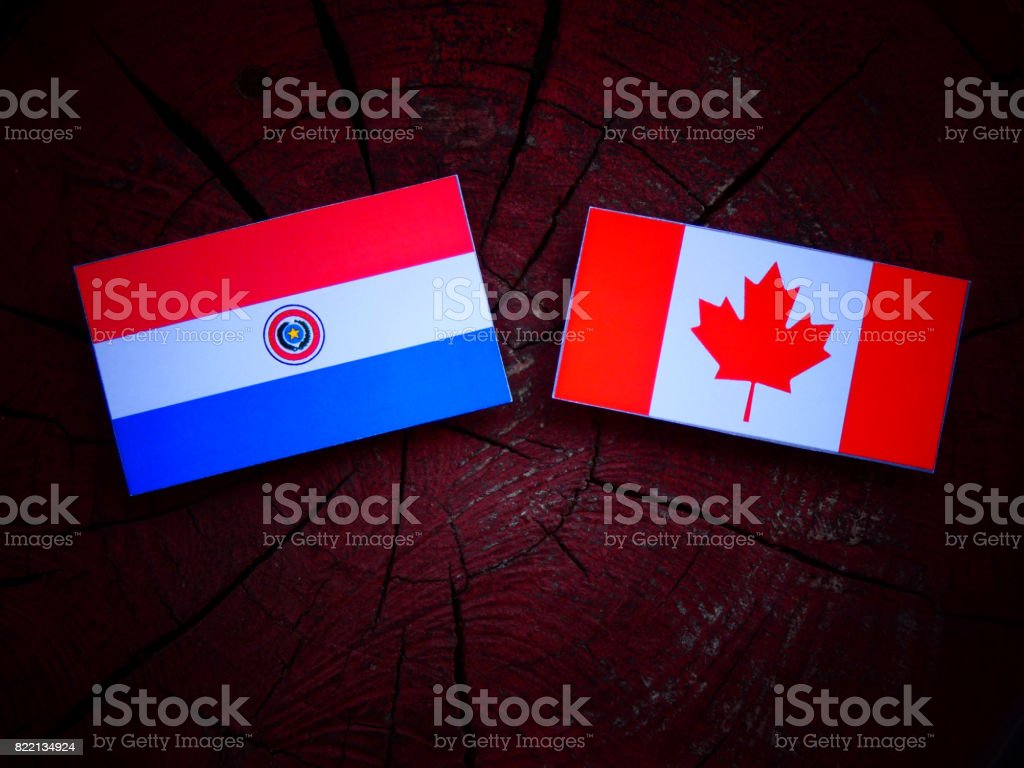 Paraguay flag with Canadian flag on a tree stump isolated stock photo