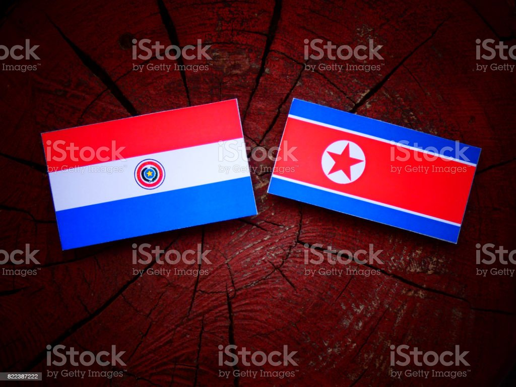 Paraguay flag with North Korean flag on a tree stump isolated stock photo