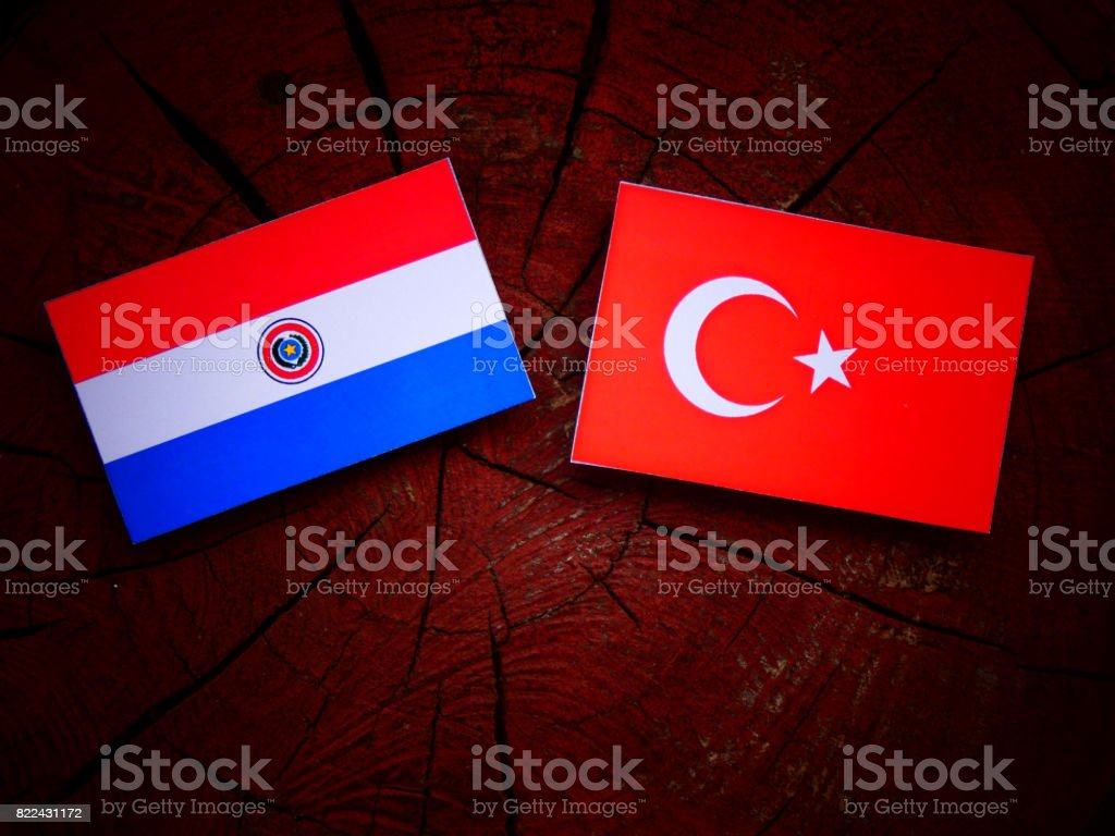 Paraguay flag with Turkish flag on a tree stump isolated stock photo