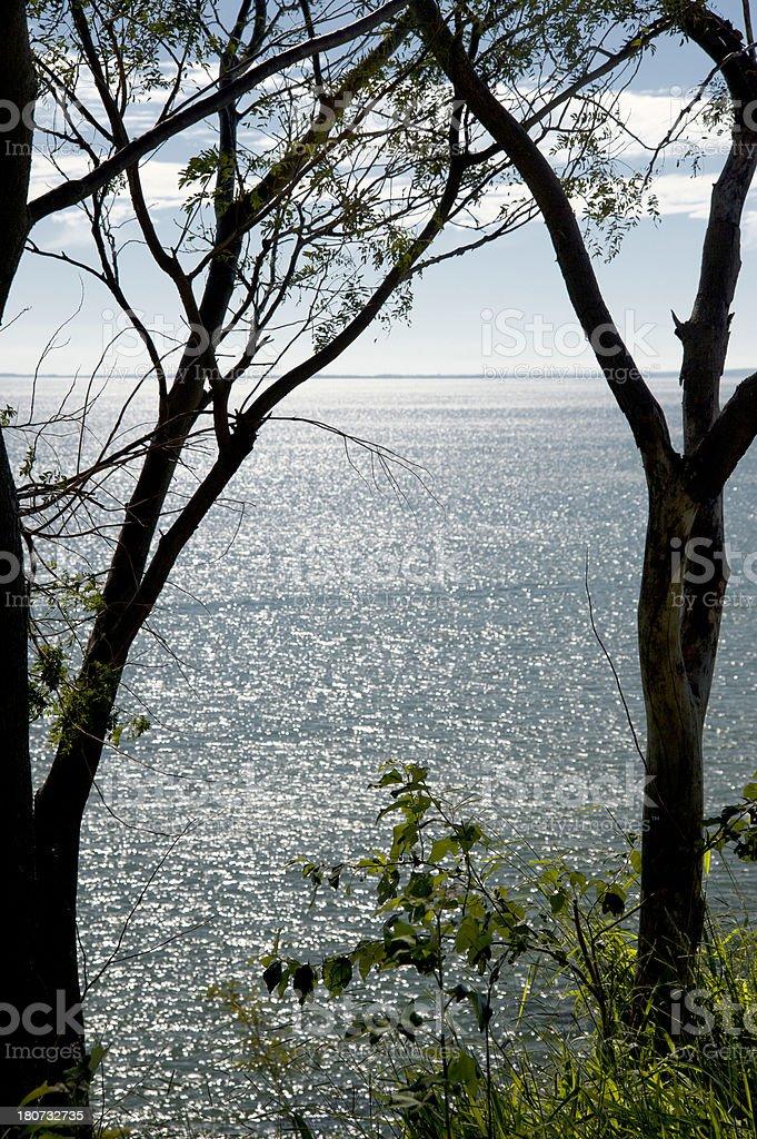 Parana River stock photo
