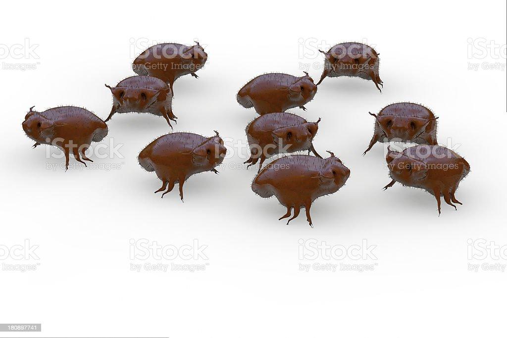 Parasites - 3d rendered illustartion royalty-free stock photo