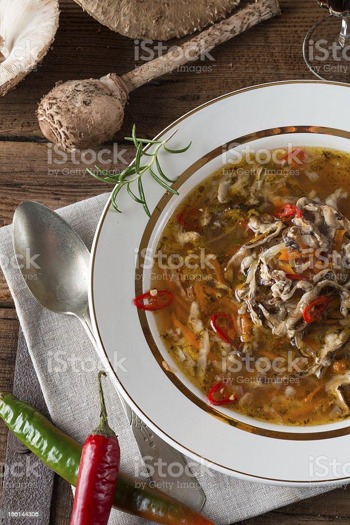 parasol mushroom soup stock photo