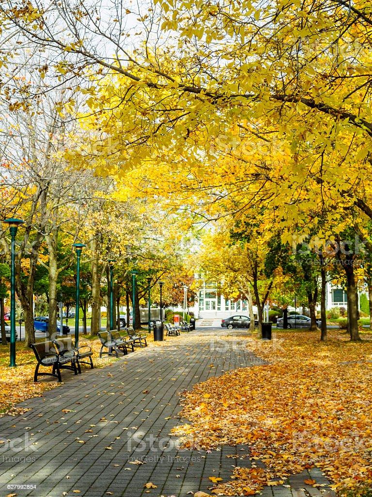 Parc Casimir Dessaulles, St-Hyacinthe stock photo