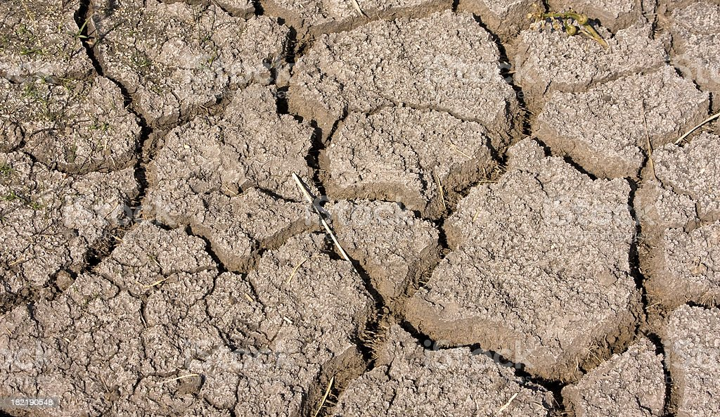 Parched dry earth background stock photo