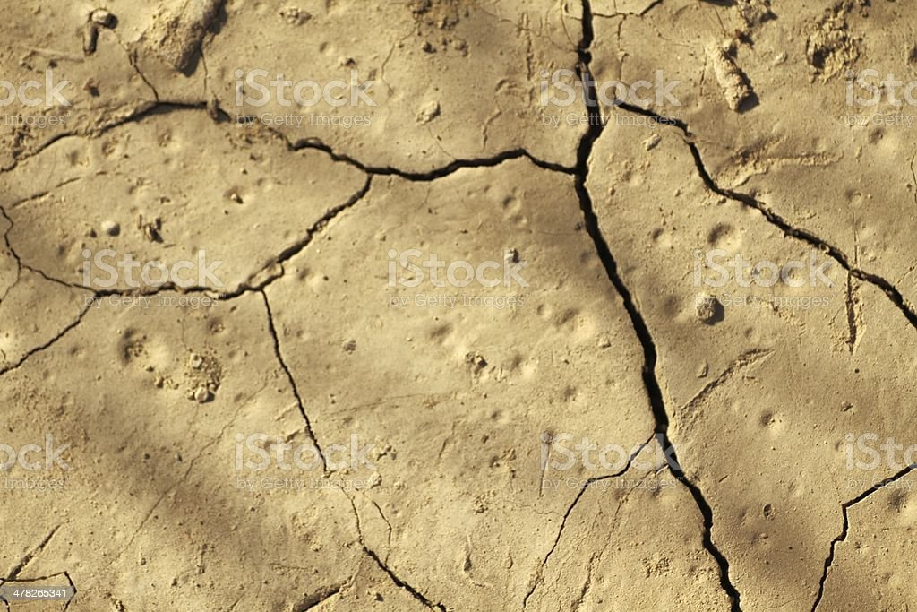 parched ground stock photo