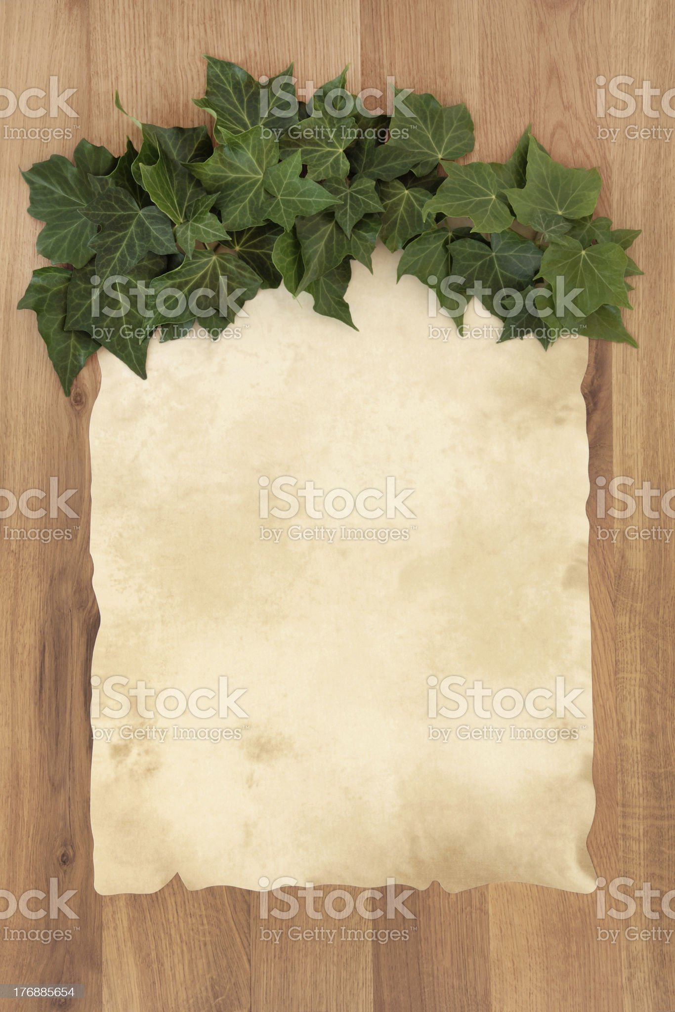 Parchment on Oak royalty-free stock photo