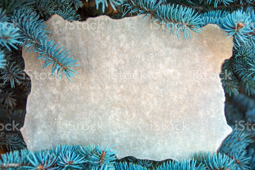 Parchment  paper in Blue Spruce branches with significant  copy space stock photo