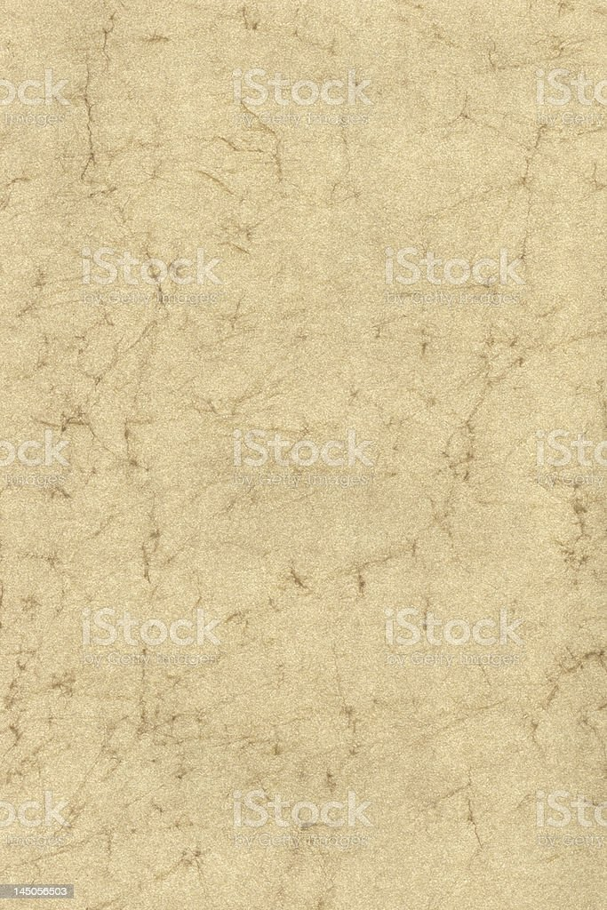 parchment texture XXL royalty-free stock photo