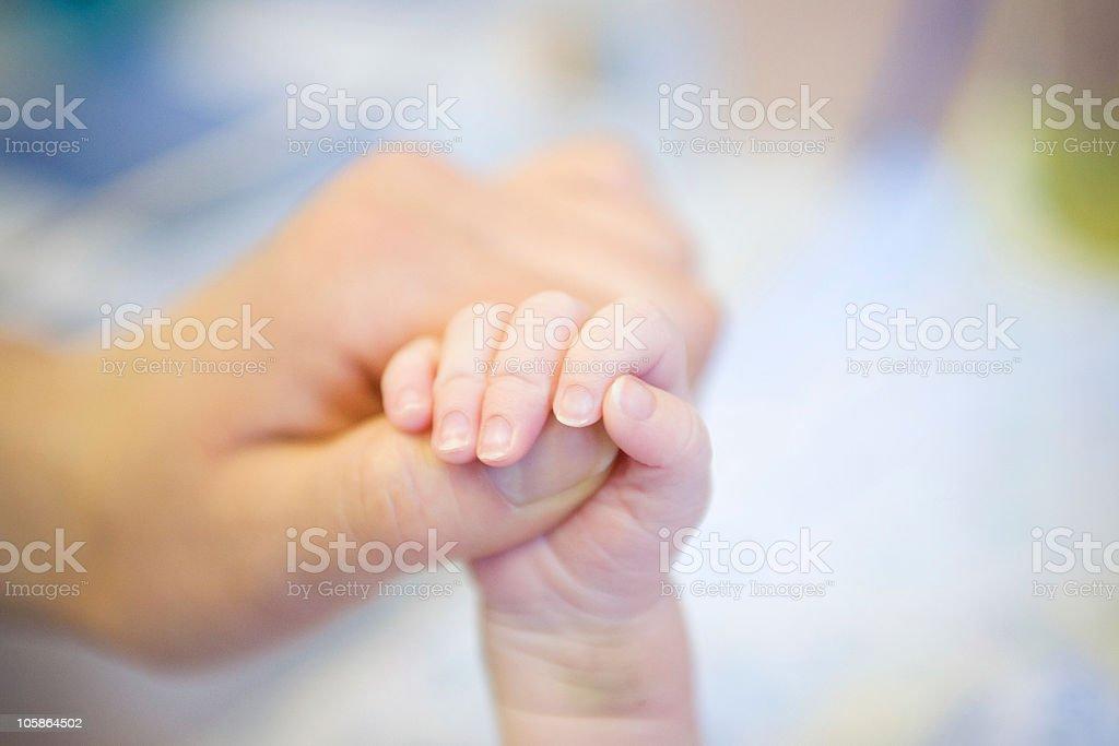 Parent hand royalty-free stock photo