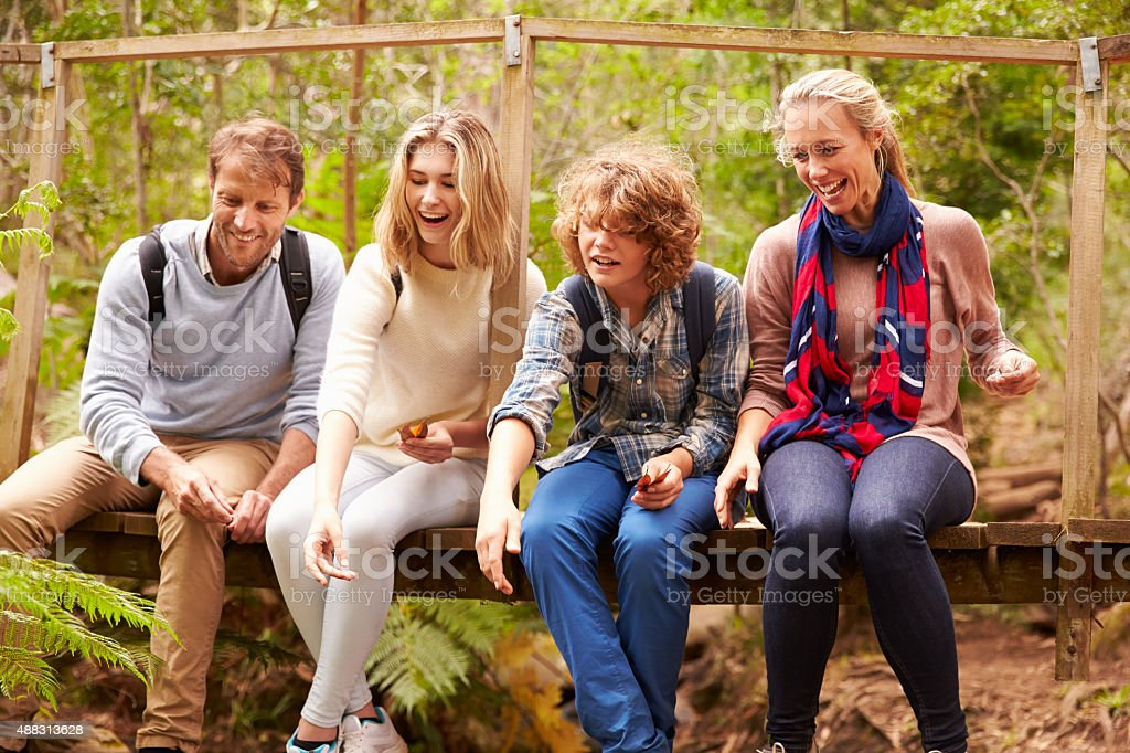 Parents and teens playing, sitting on a bridge in forest stock photo