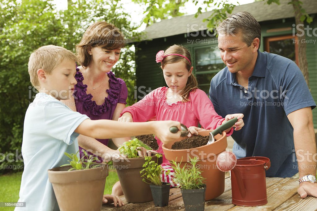 Parents Helping Kids Planting Herb Garden royalty-free stock photo