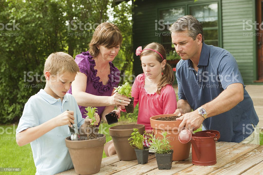 Parents Helping Young Children Planting Herb Garden Hz royalty-free stock photo