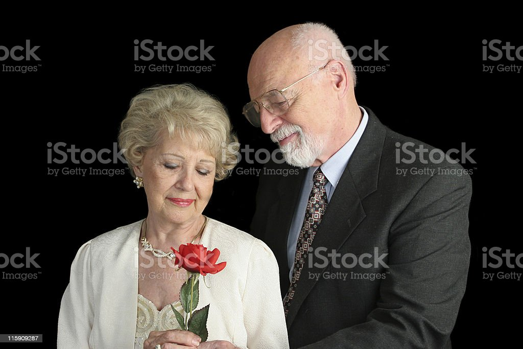 Parents of the Bride royalty-free stock photo