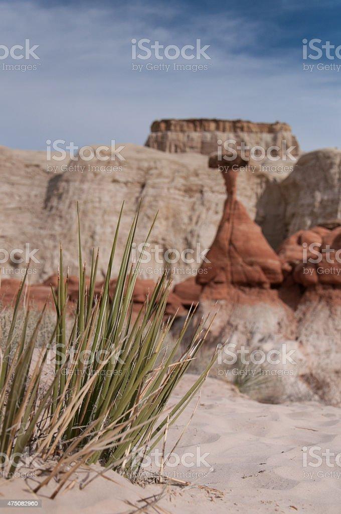 Paria Rimrocks, Toadstool Hoodoos stock photo