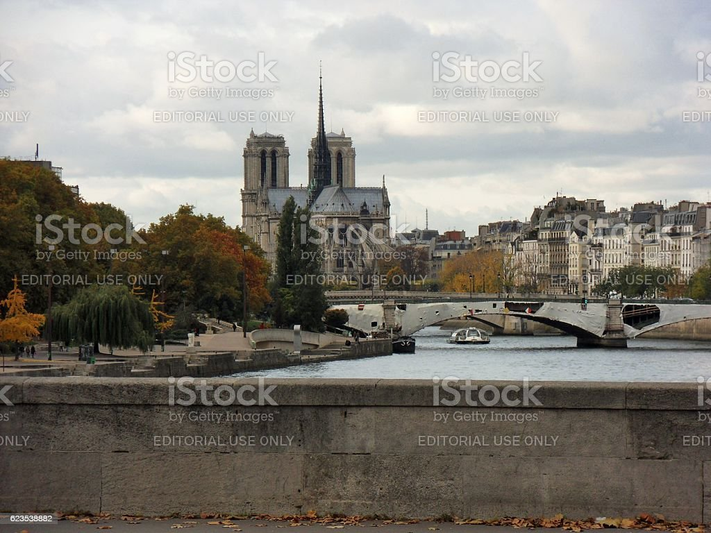 Parigi - Notre Dame da Pont d'Austerlitz stock photo