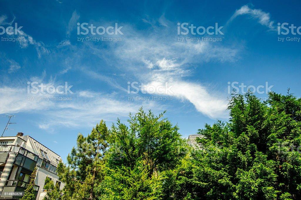 PAris and beautiful real estate stock photo