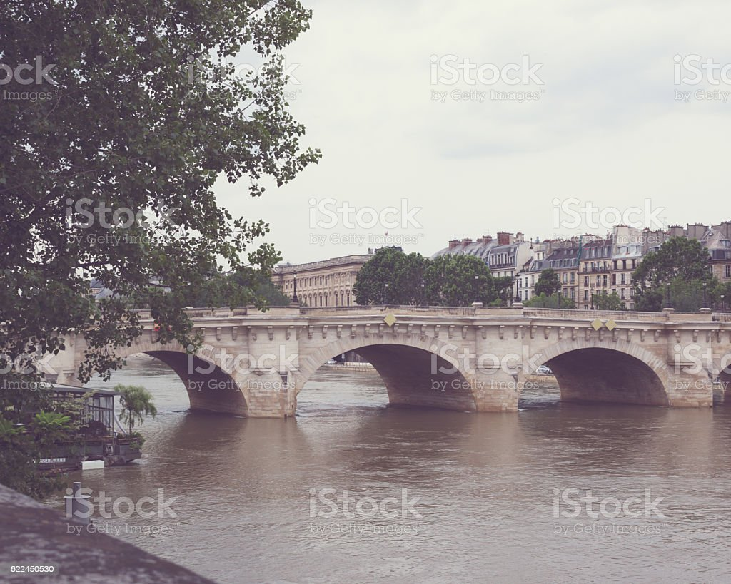Paris Bridge stock photo