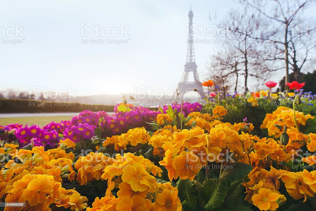 Paris in spring stock photo