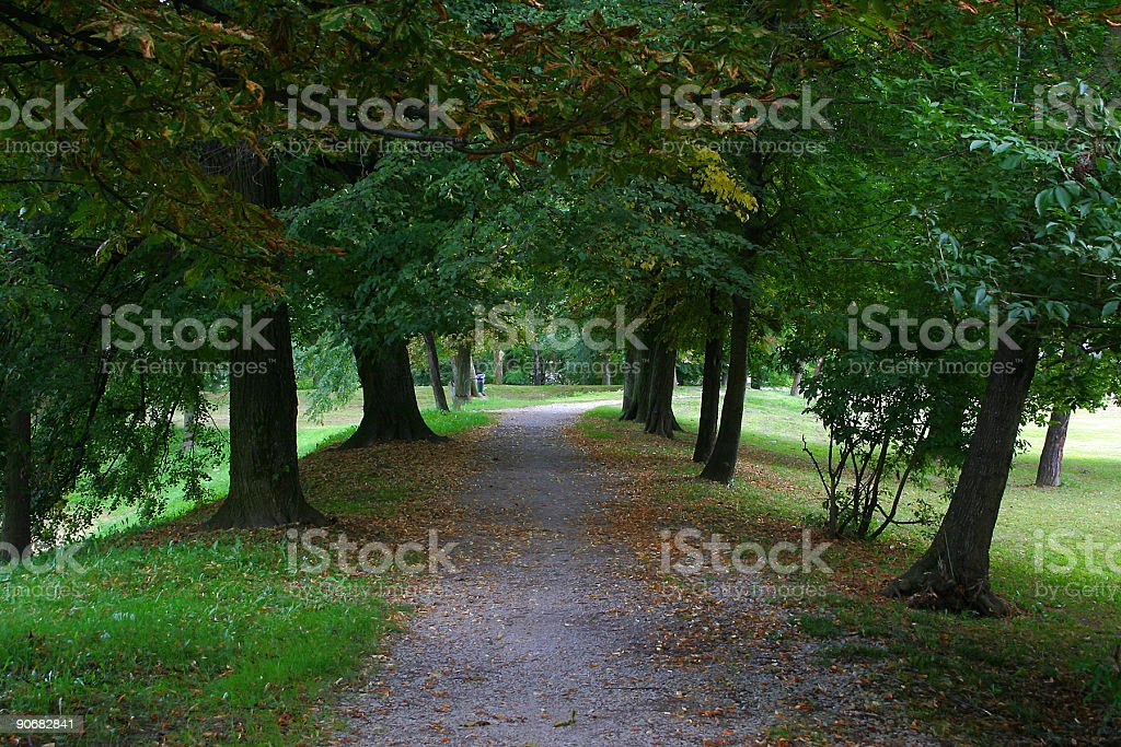 park alley royalty-free stock photo