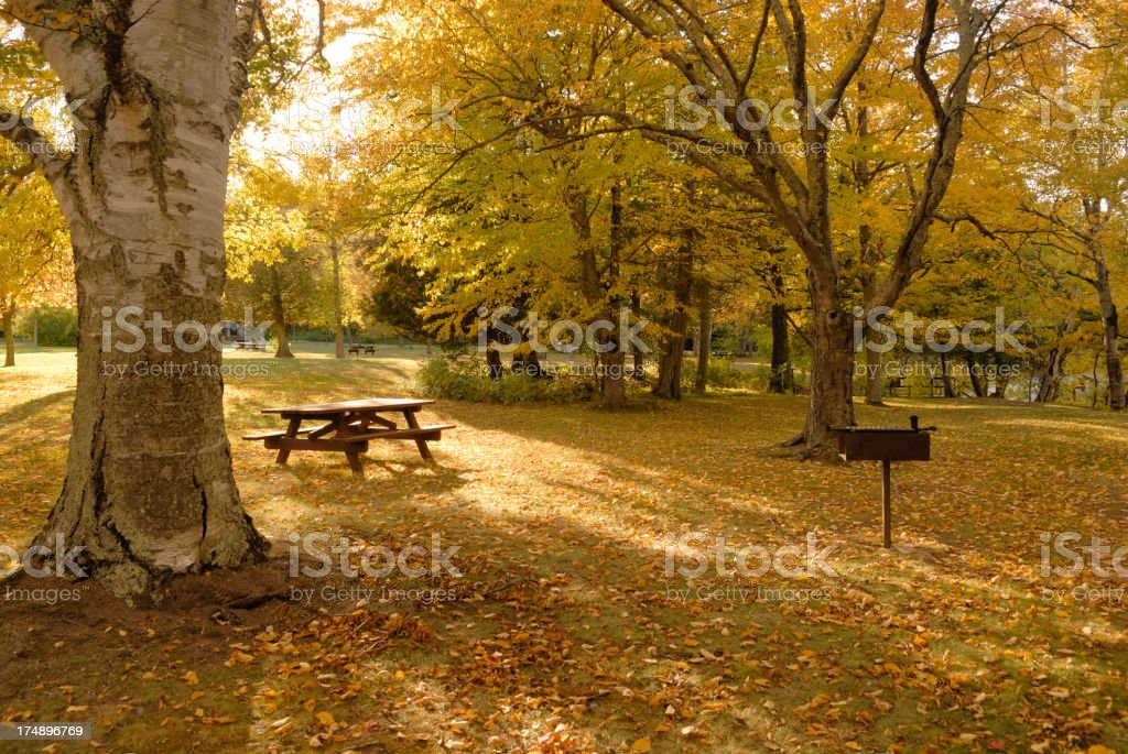 Park and picinic setting in Autumn royalty-free stock photo