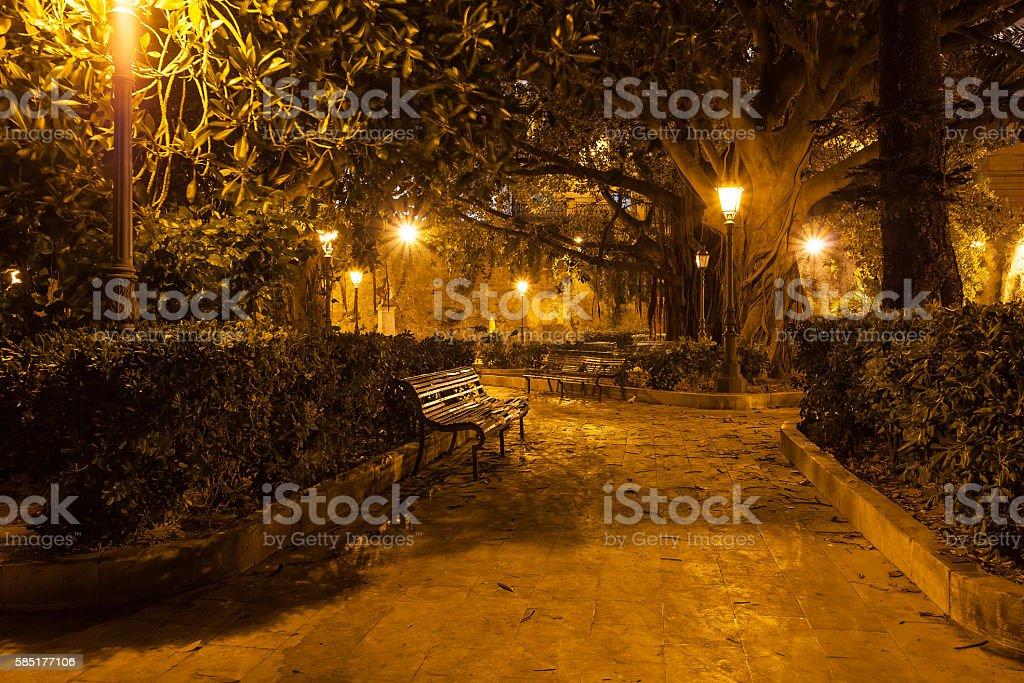 Park at night stock photo