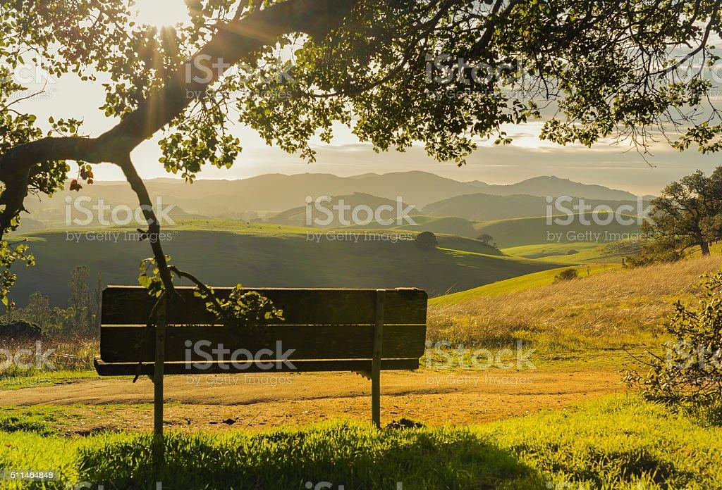 Park Bench at Sunset stock photo