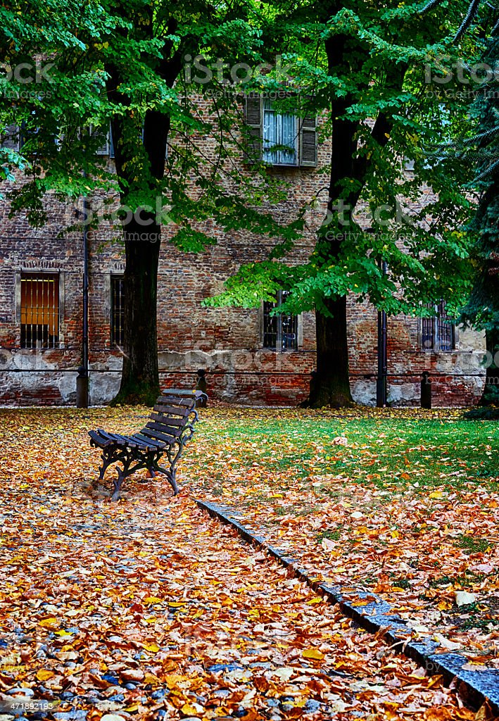 Park Bench. Color Image royalty-free stock photo