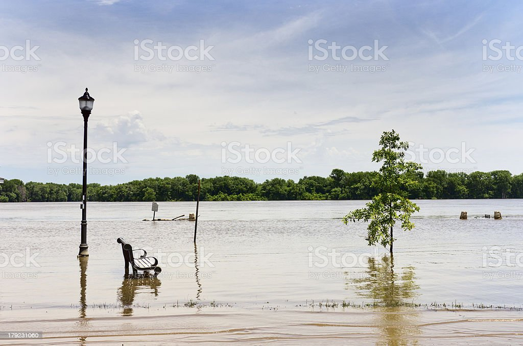 Park Bench in the River royalty-free stock photo