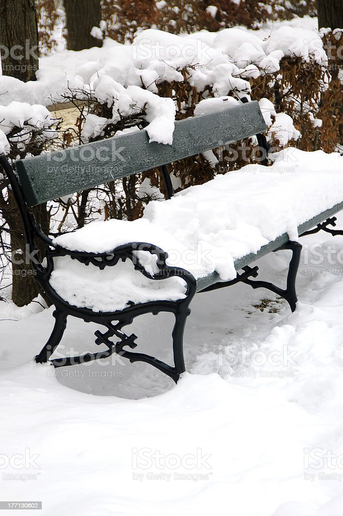 Park bench in winter stock photo