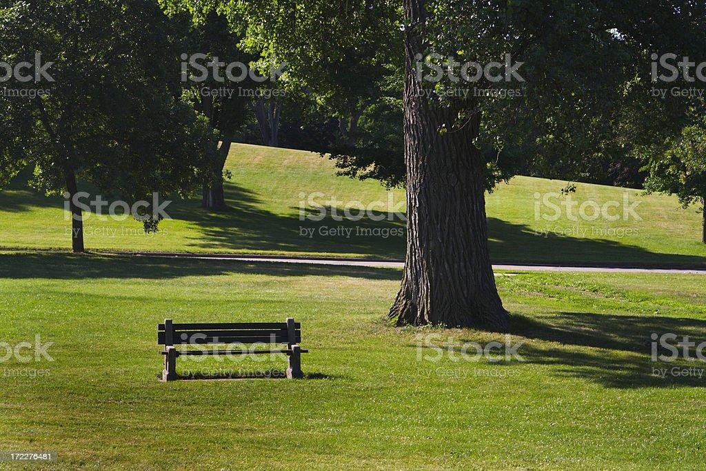 Park Bench Morning royalty-free stock photo