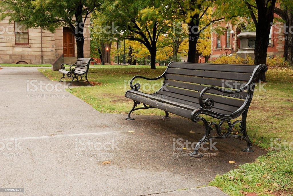 Park Bench, Prince Edward Island. royalty-free stock photo