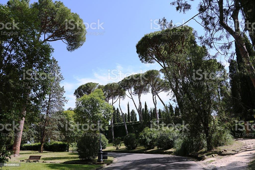 Park between Abbazia San Miniato Church San Salvatore, Florence  Italy stock photo