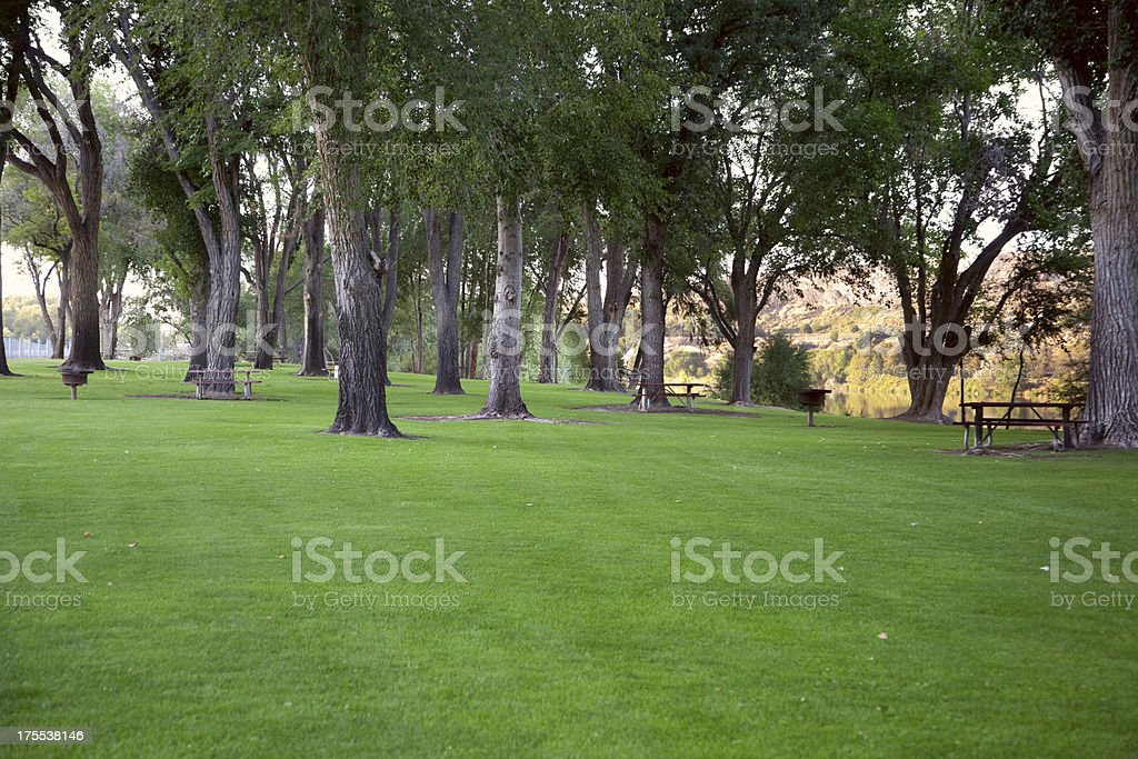 Park by Snake River royalty-free stock photo