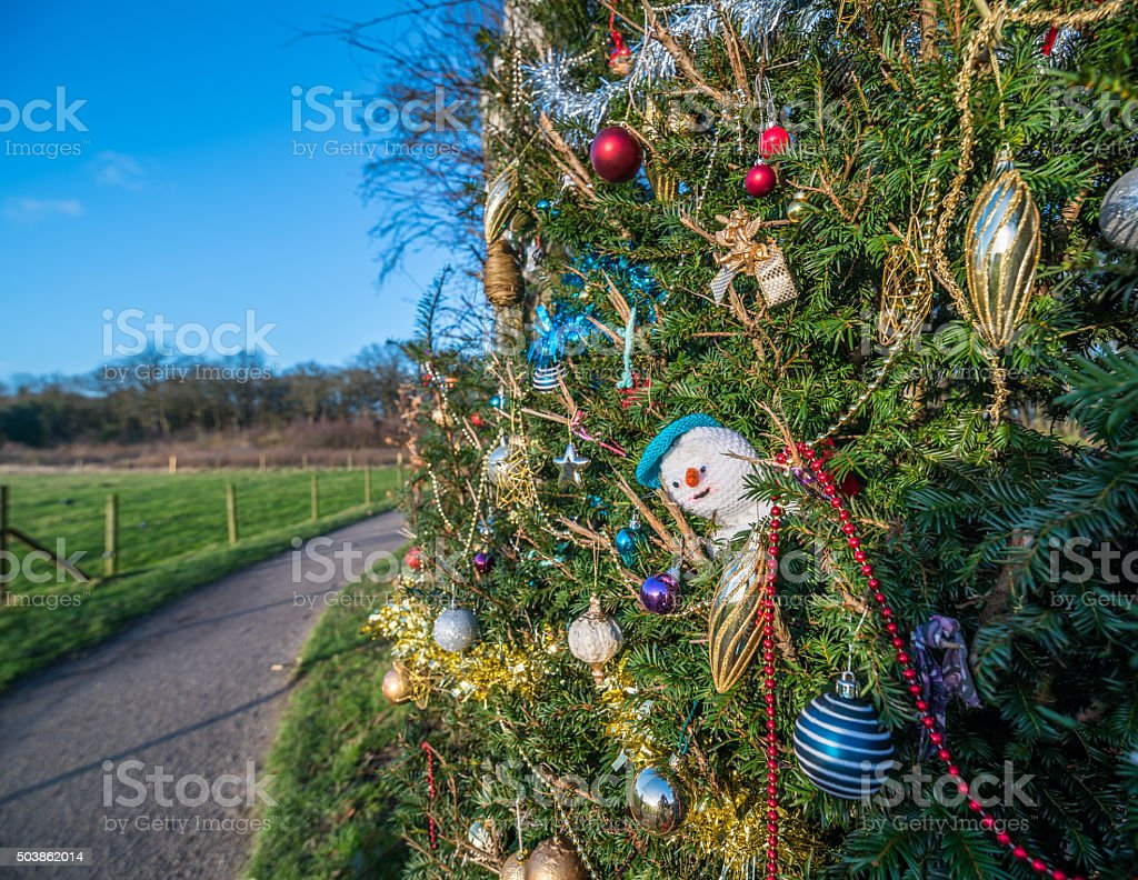 Park Christmas Decorations stock photo