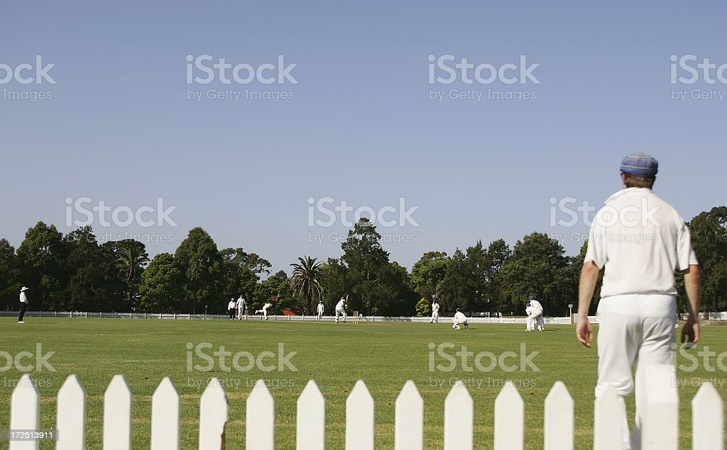 Park Cricket General View royalty-free stock photo