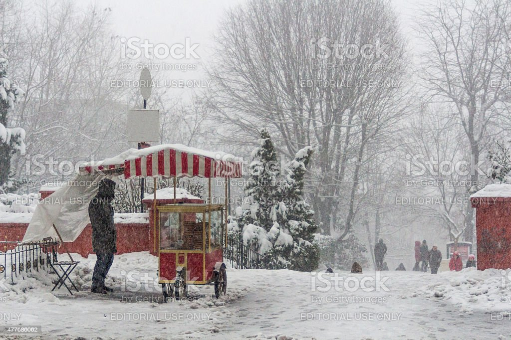 Park During Blizzard stock photo