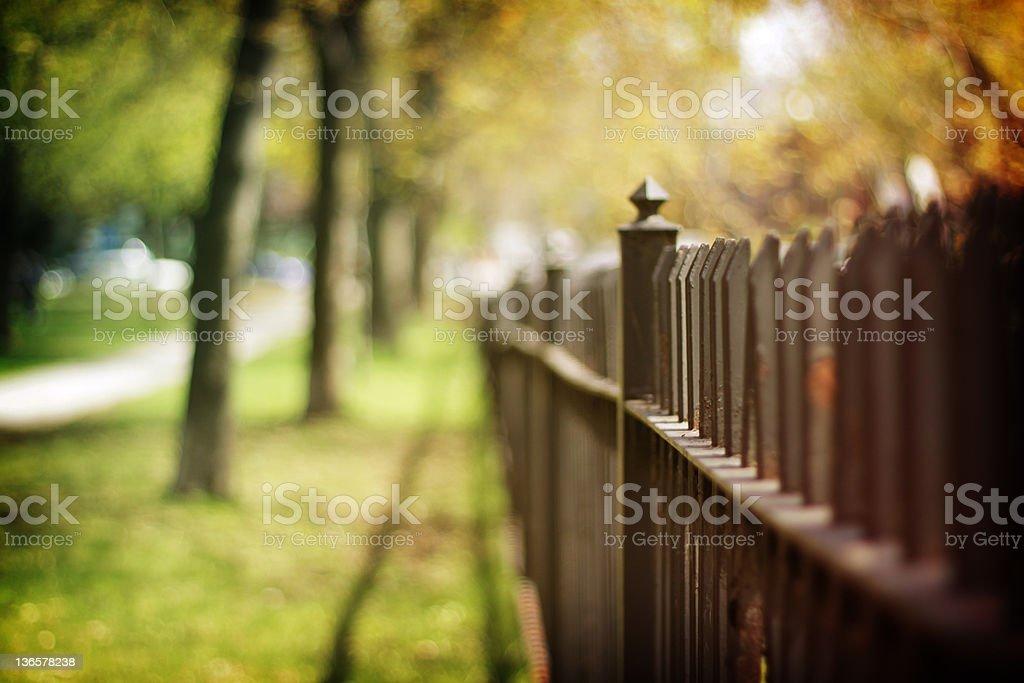 Park fence royalty-free stock photo
