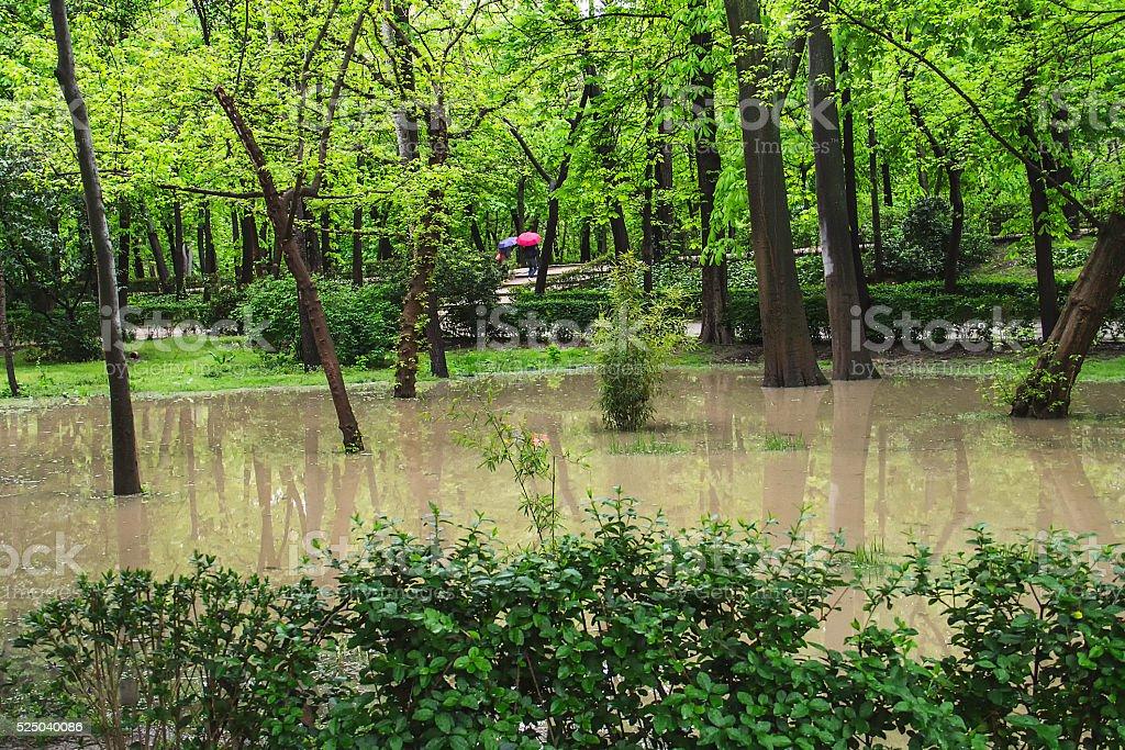 Park flooded by the rain stock photo
