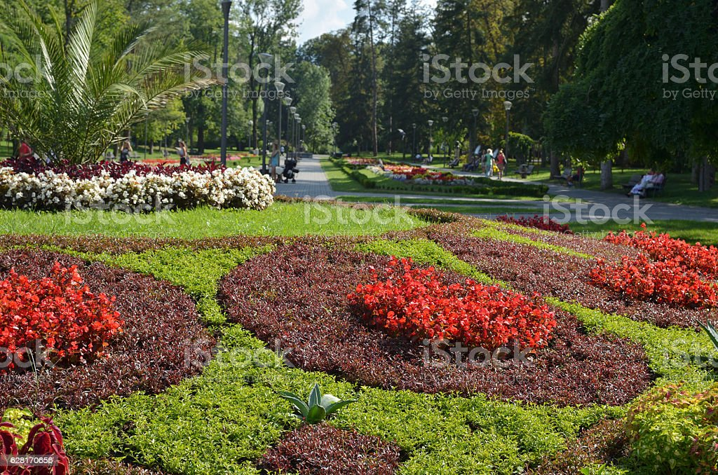 Park Flowers and Trees stock photo