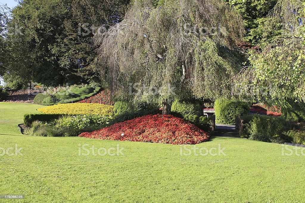 Park garden design stock photo