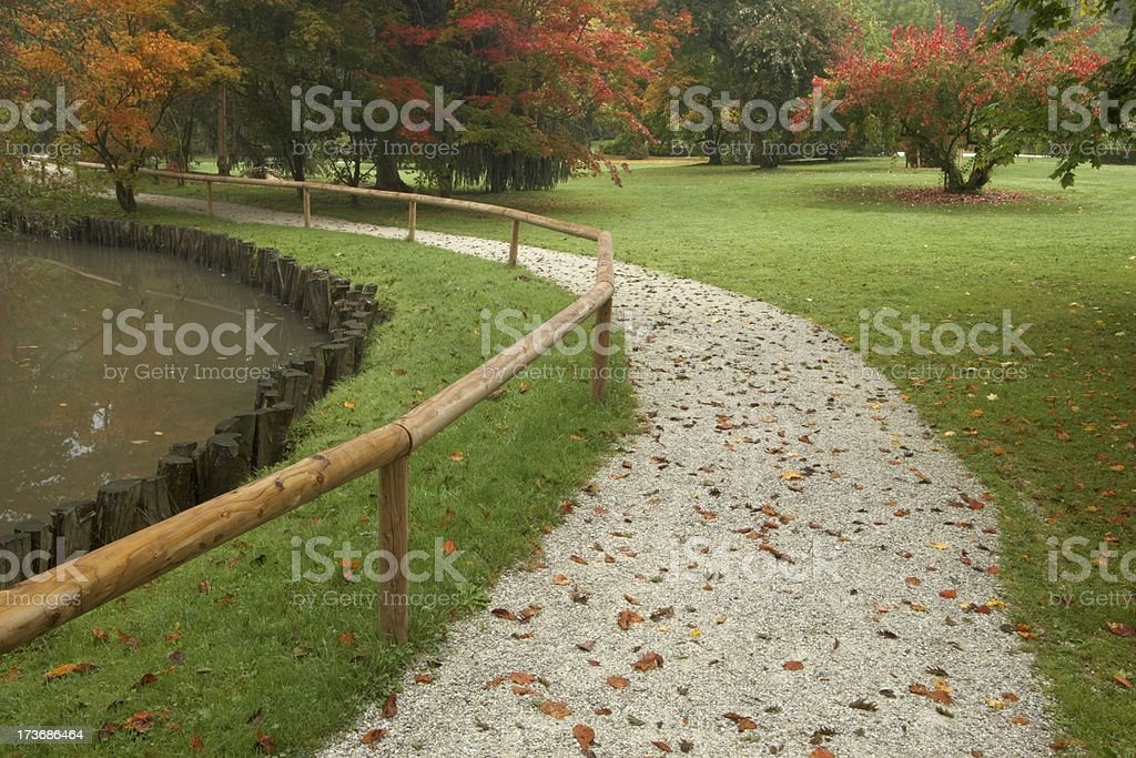 Park in autumn royalty-free stock photo