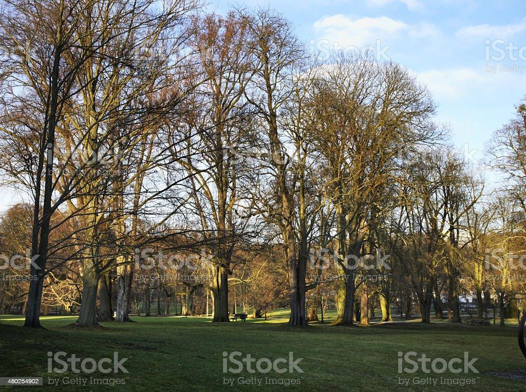 Park in Bad Homburg. Germany stock photo