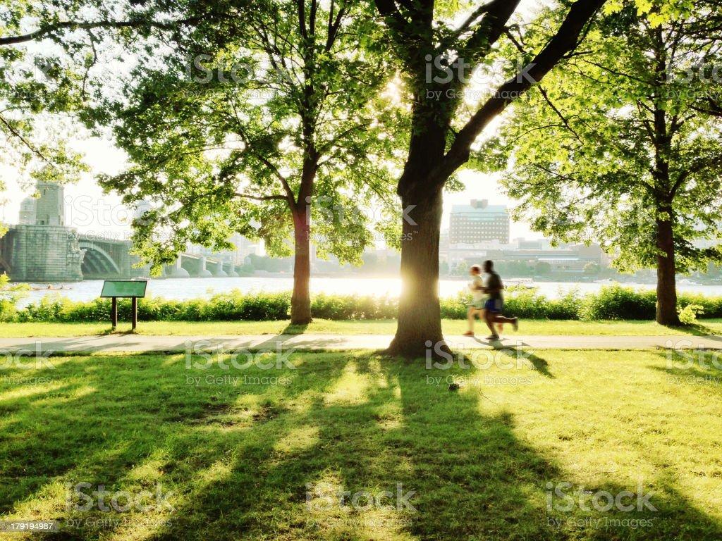 Park in Boston stock photo