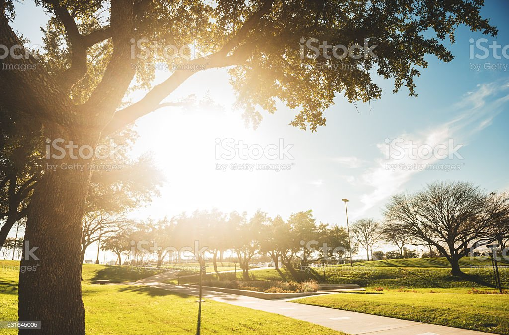 Park in Dallas stock photo