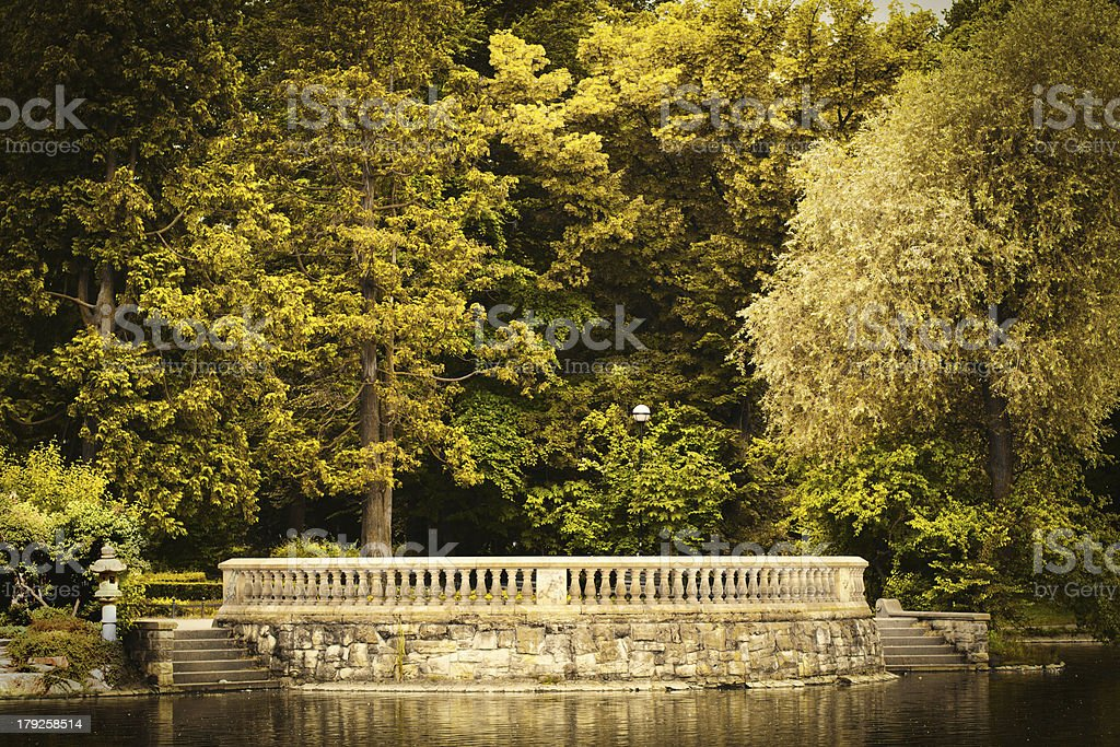 Park in fall  time royalty-free stock photo